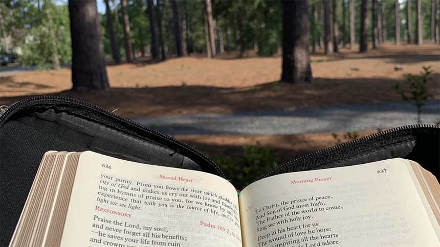 #breviaryviews