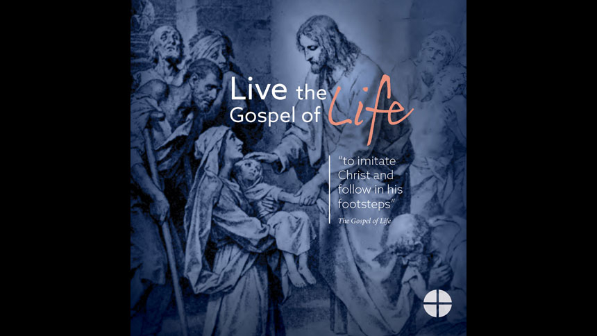 Live the Gospel of Life: Respect Life Reflection