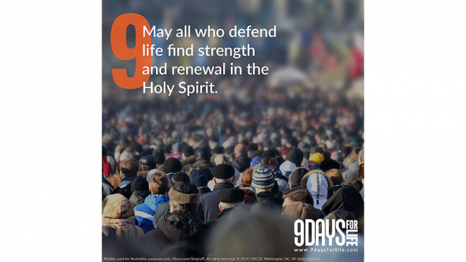 9 Days for Life: Day 9 - May all who defend life find strength and renewal in the Holy Spirit.